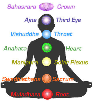 importance of yoga in human life